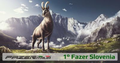 FazerSlovenia small